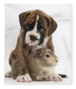 Boxer Puppy And Guinea Pig Fleece Blanket