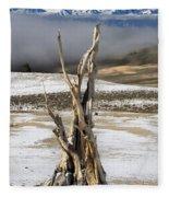 Bristlecone Fog And Sierra Nevada 1 Fleece Blanket