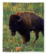 Buffalo Custer State Park Fleece Blanket