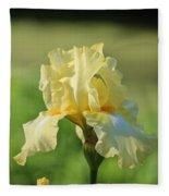 Buttery Soft  Fleece Blanket