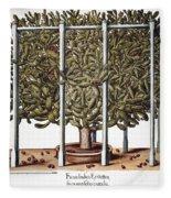 Cactus: Opuntia, 1613 Fleece Blanket