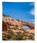 Canyon Badlands And Colorado Rockies Lanadscape Fleece Blanket