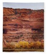 Canyon De Chelly 10 Fleece Blanket