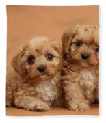 Cavapoo Pups Fleece Blanket