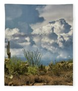 Chasing Clouds Again  Fleece Blanket
