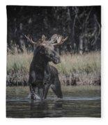 Chasing Tail Fleece Blanket
