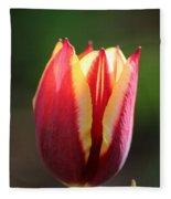 Cherry Lemon Treat Fleece Blanket