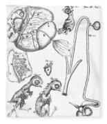 Chick Embryology, Malpighi, 1687 Fleece Blanket