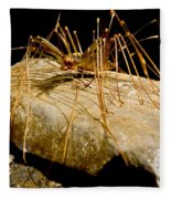 Chinese Cave House Centipede Fleece Blanket