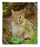 Chipmunk Fleece Blanket