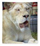 Circus Lion Fleece Blanket
