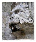 Closeup Of A Public Fountain In Dubrovnik Croatia Fleece Blanket