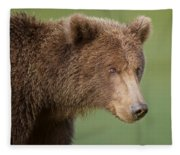 Coastal Brown Bear Fleece Blanket