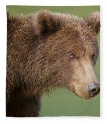Coastal Brown Bear Fleece Blanket