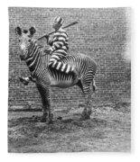 Comic Criminal Riding A Zebra Fleece Blanket