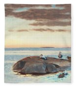 Common Eiders On A Rock Fleece Blanket