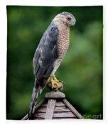 Cooper's Hawk  Fleece Blanket