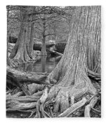 Cypress Trees I V Fleece Blanket
