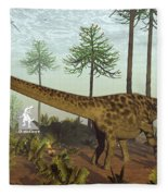 Diplodocus Dinosaurs Among Araucaria Trees - 3d Render Fleece Blanket