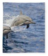 Dolphins Leaping Fleece Blanket
