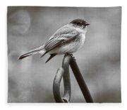 Eastern Phoebe Fleece Blanket