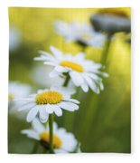Elegant White Daisies Fleece Blanket