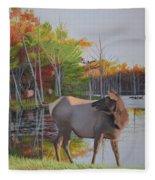 Elk Country Evening Fleece Blanket