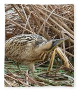 European Bittern Fleece Blanket