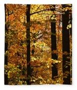 Fall Forest Fleece Blanket by Elena Elisseeva