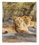 Female Lion And Cub Hdr Fleece Blanket