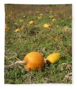 Field Of Pumpkins Fleece Blanket