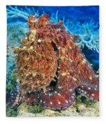 Fiji, Day Octopus Fleece Blanket