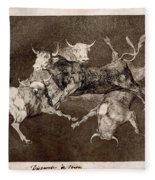 Fool's Folly Fleece Blanket