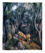 Forest In The Caves Above The Chateau Noir Fleece Blanket