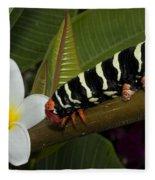 Frangipani Tree And Caterpillar Fleece Blanket