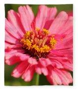 Fuchsia Pink Zinnia From The Whirlygig Mix Fleece Blanket
