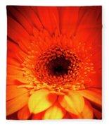 Gerbera Daisy Detail Fleece Blanket