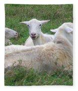 Goat Family Fleece Blanket