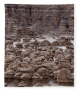 Goblin Valley 0206 Fleece Blanket