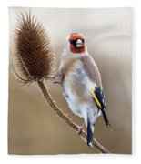 Goldfinch On Teasle Fleece Blanket