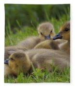 Goslings Fleece Blanket