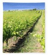 Grapevines In A Vineyard Fleece Blanket