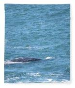 Gray Whale Fleece Blanket