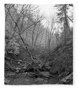 Great Smoky Mountains National Park Fleece Blanket