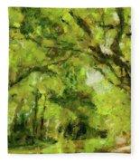 Green River Fleece Blanket