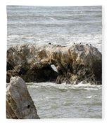 Grey Water At Window Rock Fleece Blanket