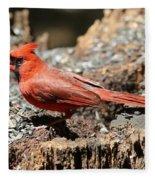 Hungry Cardinal Fleece Blanket