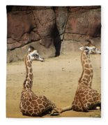 Having A Giraffe Fleece Blanket