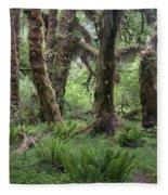Hoh Rain Forest 3371 Fleece Blanket