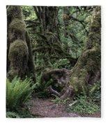 Hoh Rain Forest 3389 Fleece Blanket